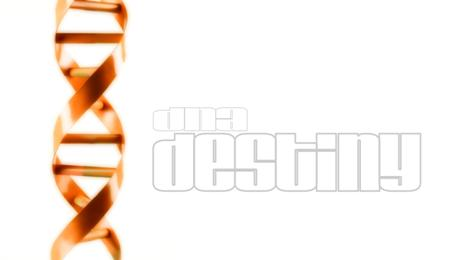 DNADestiny