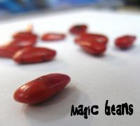 plunge 09.30 magic beans